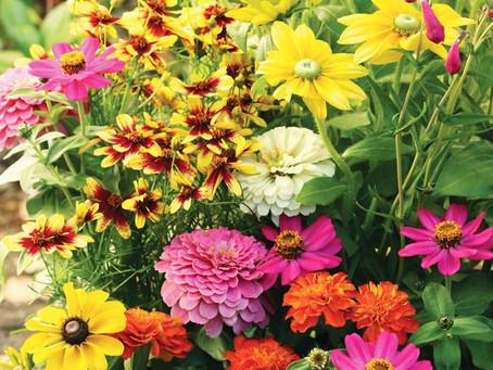 Spring Flower Fundraiser