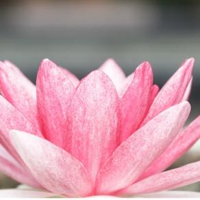 Conscious Awareness and Personal Responsibility
