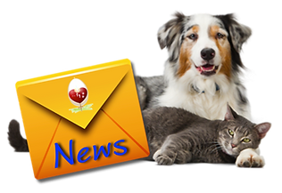 Impronte news