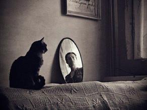 Anima-li specchio dell'anima: la Scienza dello Spirito.