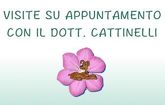 Visite dott. Cattinelli Stefano