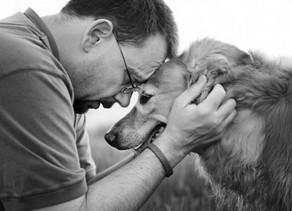 Accompagnare empaticamente un animale alla fine della sua vita