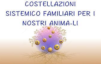 Costellazioni Sistemico Familiari per gli animali