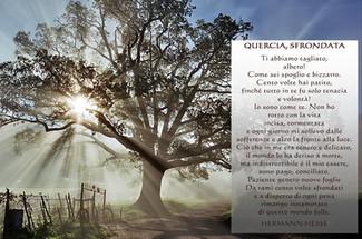 La quercia sfrondata (Hermann Hesse)