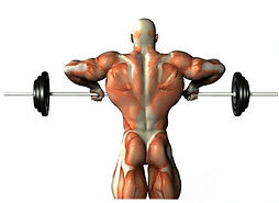 Upper Body Shaping