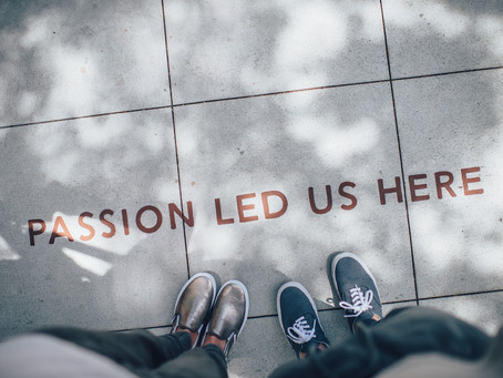 Curating Passion into Experience