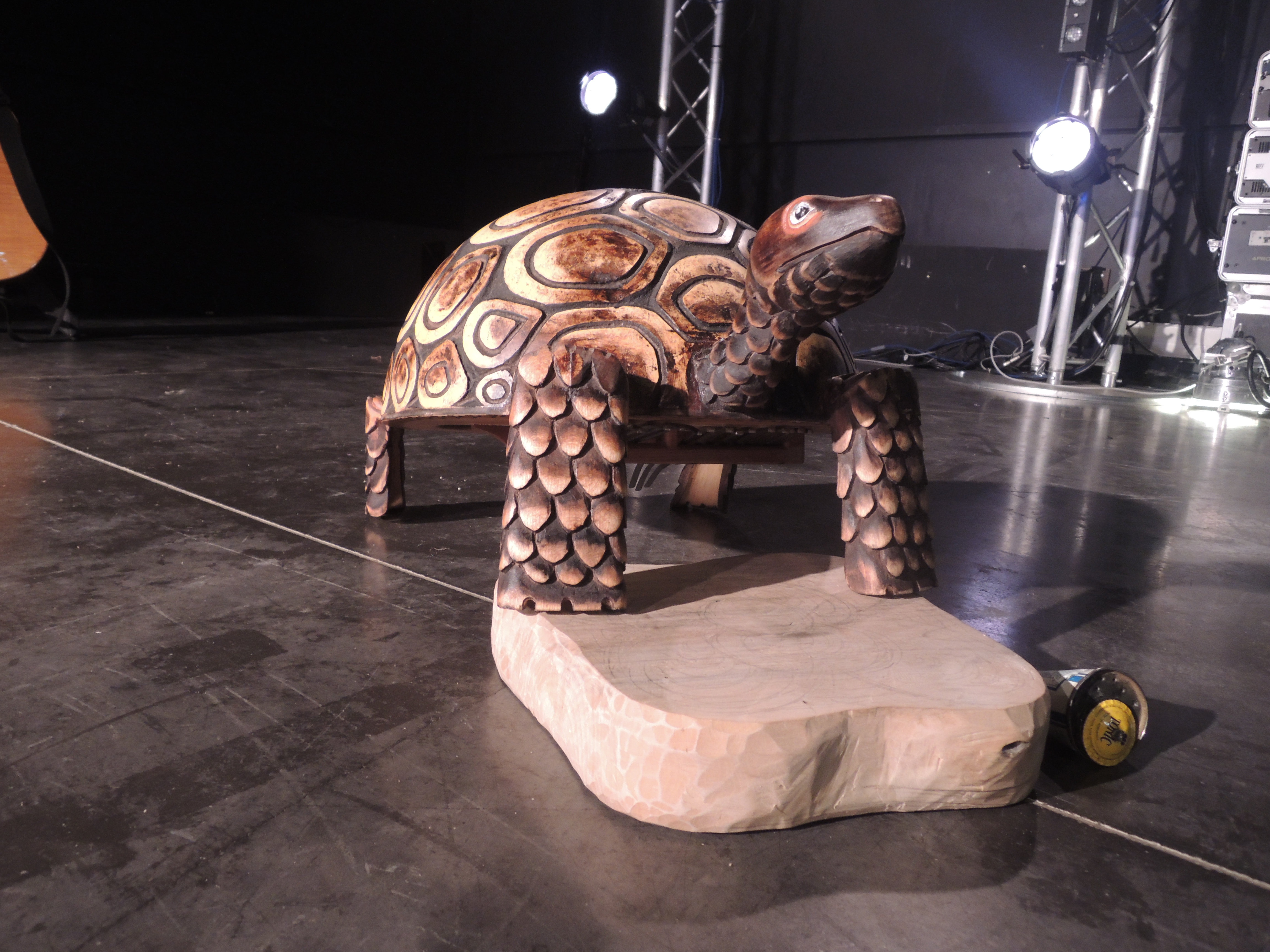 Tortue 1