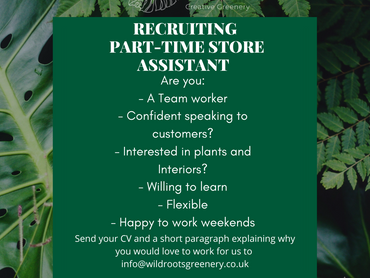 Part-Time Sales Assistant Job Description