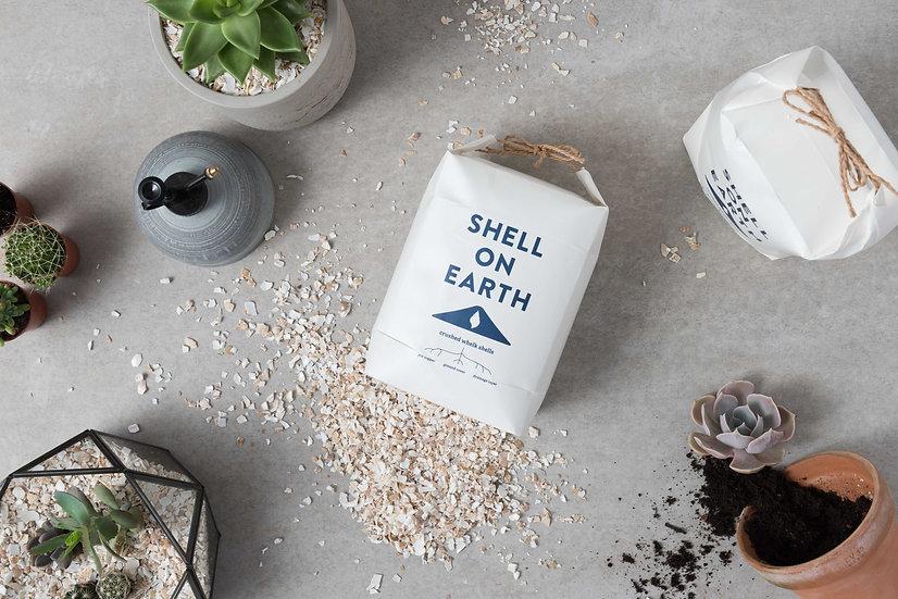Shell on Earth