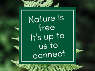 Connecting with Nature - Digging Deeper