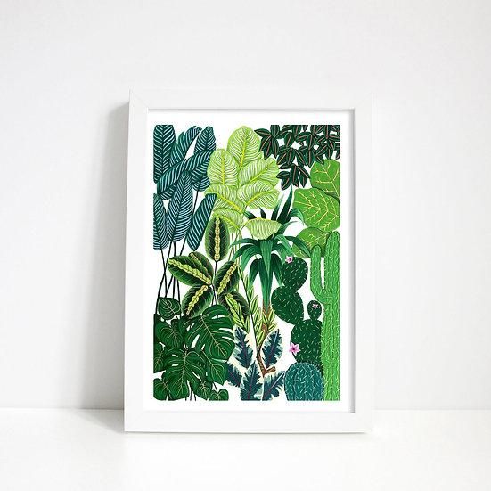 Lara Oztekin- Tropical Plant print