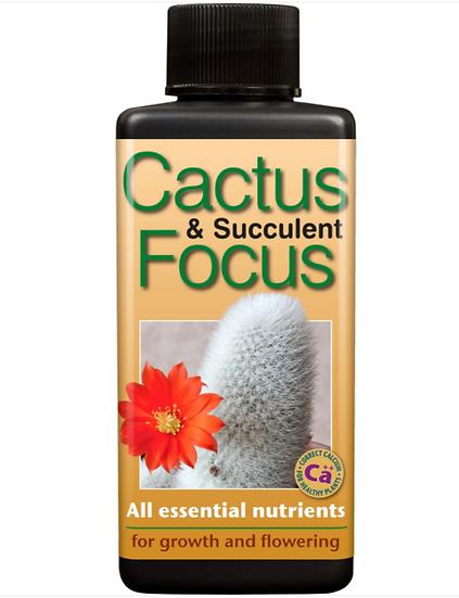 Catcus & Succulent Focus 300ml