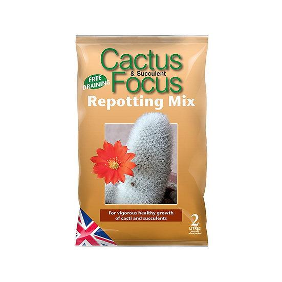 Cactus and Succulent Repotting Mix