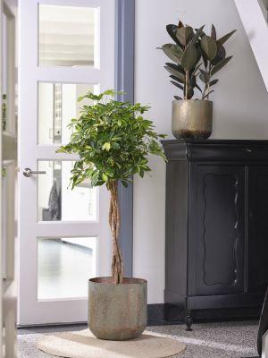 Lian Copper Green Pot