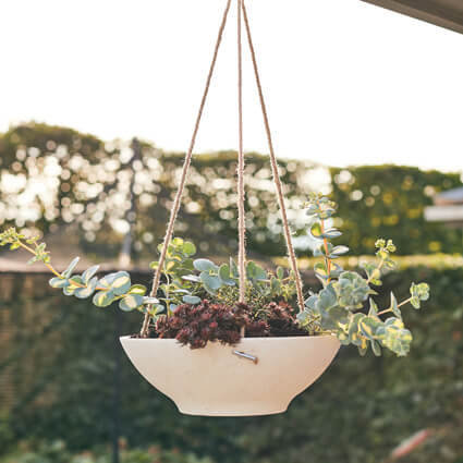 Orchid Hanger (Suitable for all plants)