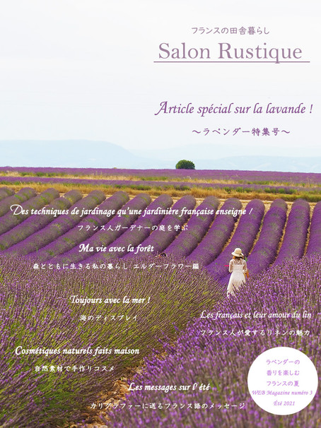 Magazine de Salon Rustique  No.3