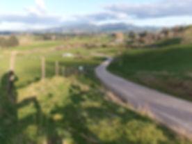 Driveway prep