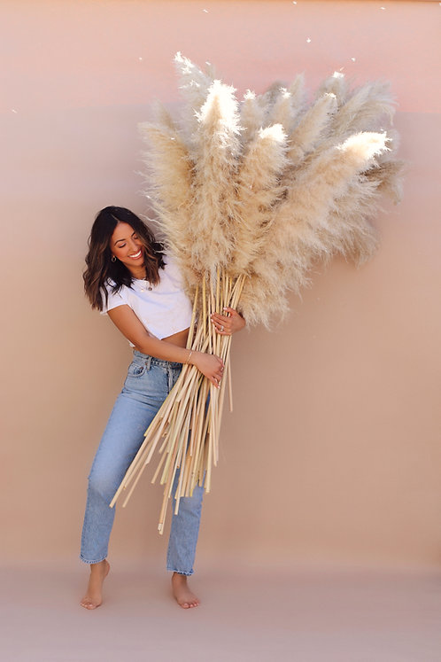 Extra Large 6ft. Tall Pampas Grass - Bundle of 3 - Angel Wings