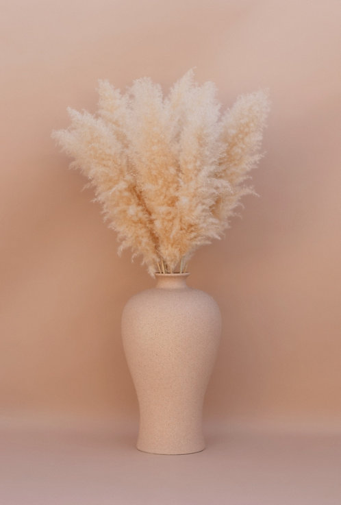 Large 4ft. Tall Pampas Grass - Bundle of 3 - Halo