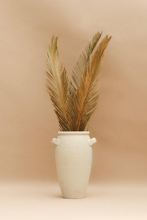 Natural Dried Sago Palm Leaf - Sage Green/Tan - 1 Stem