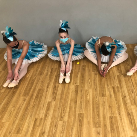 Sleeping Beauty Workshop 2021