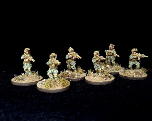 15mm (1:100) Navy Seals 2