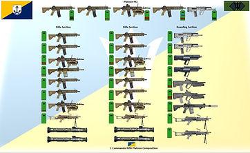 ADF Commando platoon