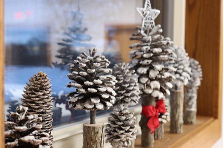 pine cones 1.JPG