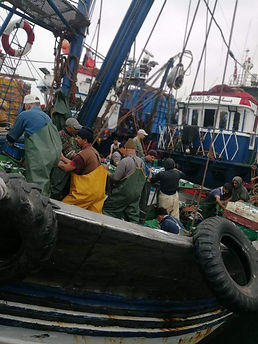 A Moroccan fishing ship