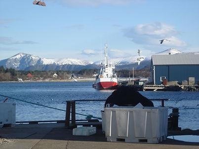 Iceland port