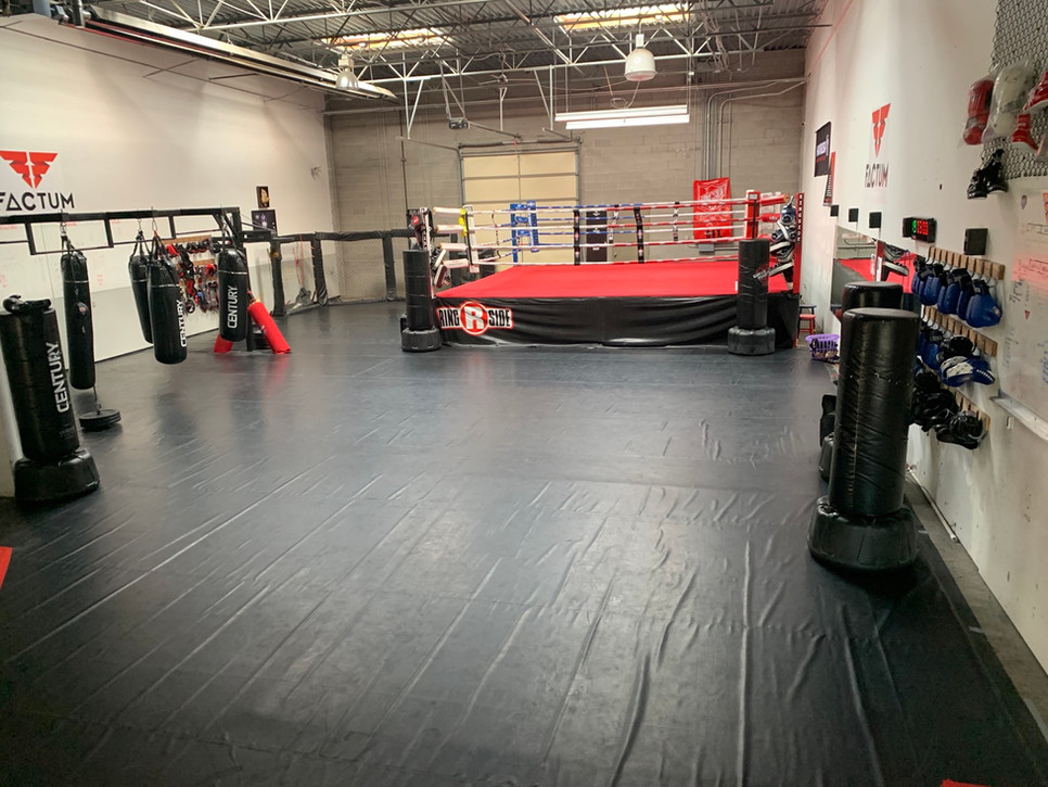Boxing Kickboxing, Muay Thai, MMA Jiu Ji