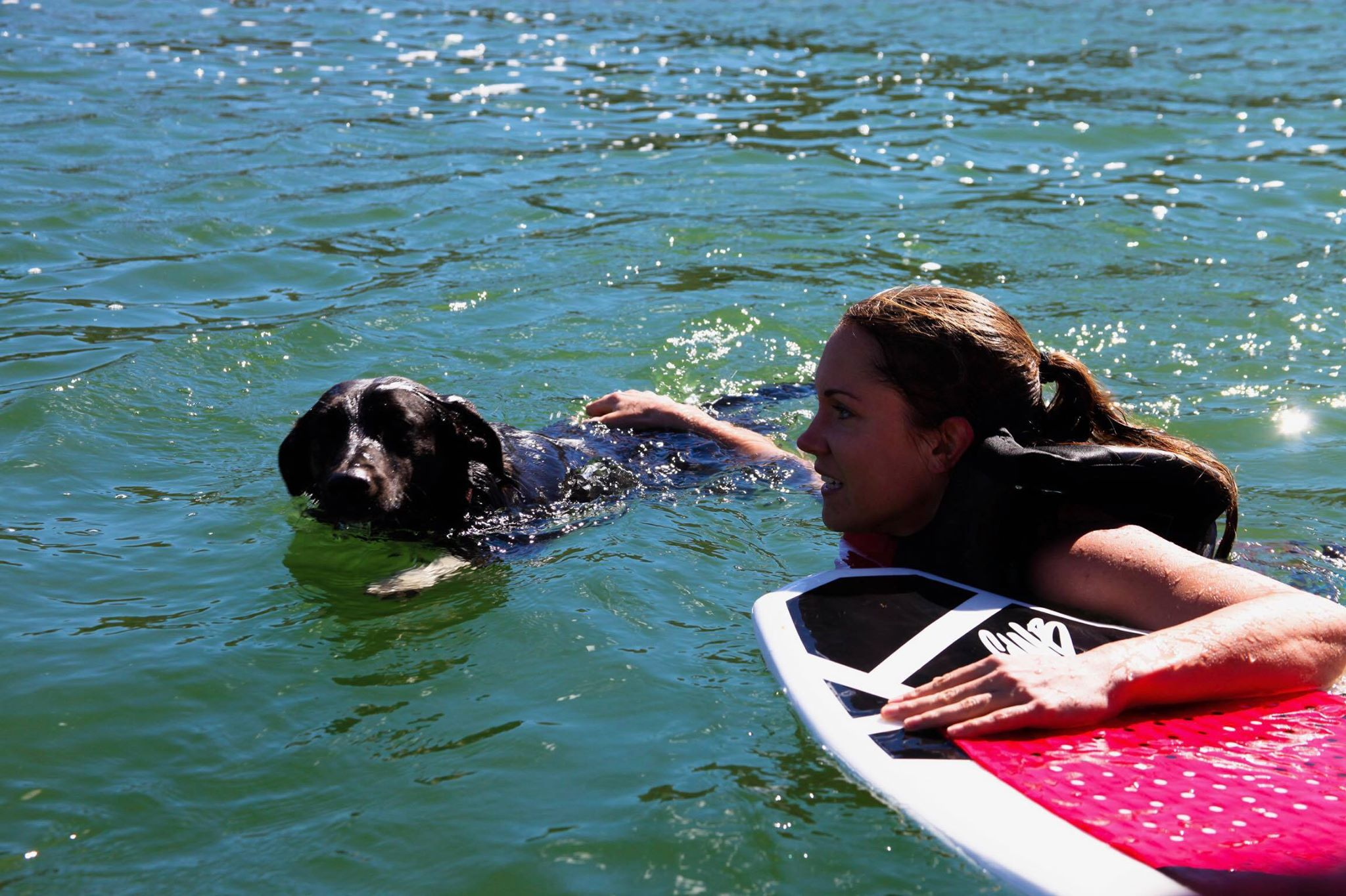 Everyone can enjoy the sun with our Motor Boat Rentals in Utah
