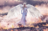 Fine art image. Stunning angel woman wal