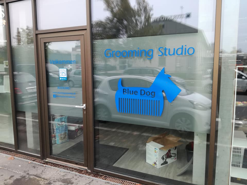 Blue Dog Grroming Studio