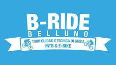 Logo-BRIDE.jpeg