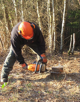 CS31 Chainsaw Training