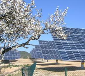 Regole su mantenimento incentivi Conto Energia fotovoltaico: aperta la consultazione.