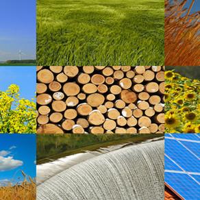 Casa a rinnovabili: FV e pompa di calore o solare termico e biomasse?