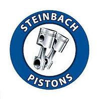 Steinbach_Pistons_2013.jpg