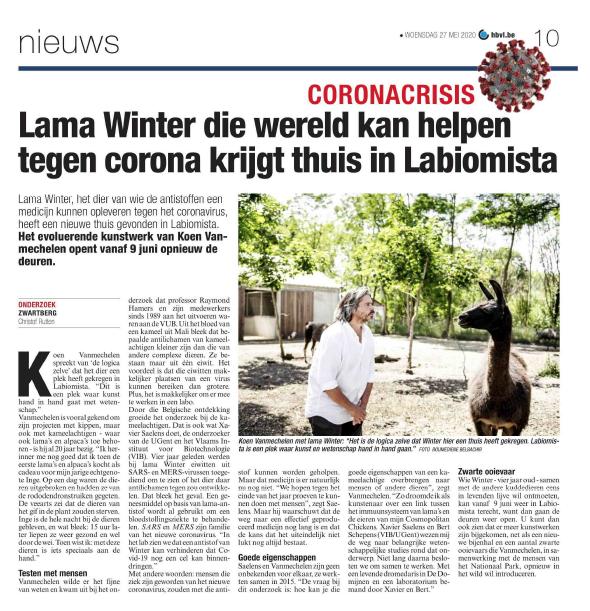 Llama Winter, Het Belang Van limburg