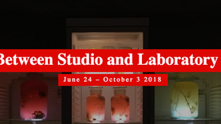 New Worlds: Art between Museum and Laboratory, Villa Rot, Burgrieden (DE), 24 JUN - 3 OCT, 2018