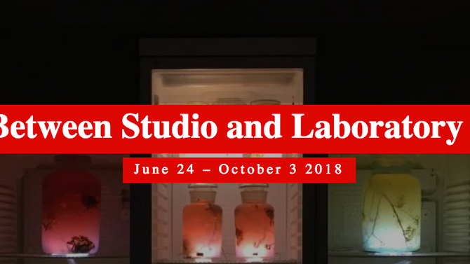 New Worlds: Art between Museum and Laboratory, Villa Rot, Burgrieden (DE), 24 JUN - 3 OCT, 2018