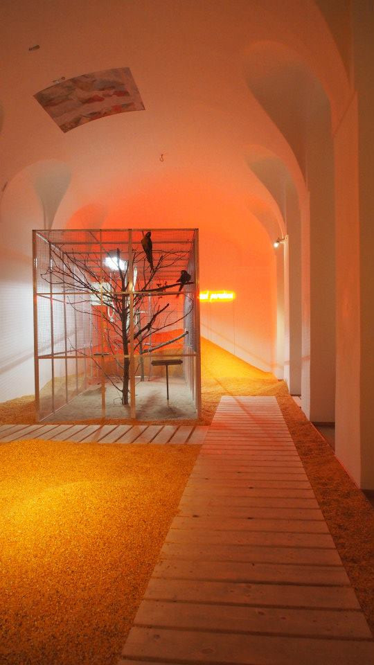 installation view, Protected Paradise, Belvedere, Vienna (AT), 2015