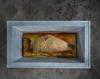 FORGOTTEN MEMORIES (SOLO EXHIBITION), Museo Barracco, Rome (IT), 1 MAR - 30 JUN 2021 (POSTPONED)