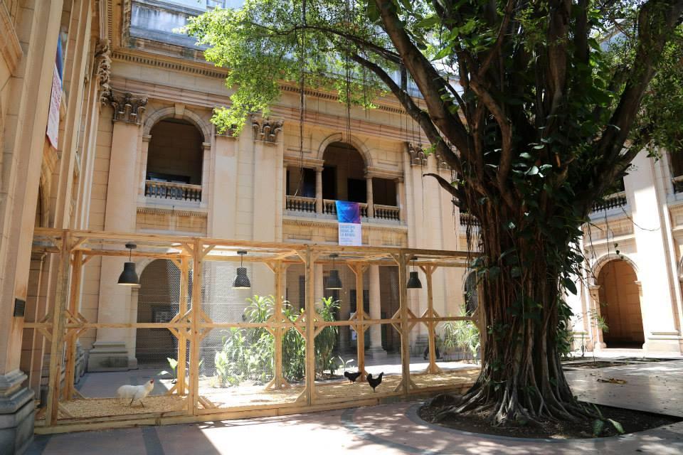 Arena de Evolución - L.O.C.K., 12 Bienal de la Habana, Cuba