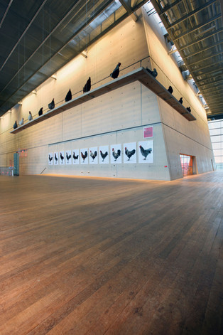 Cosmopolitan Chicken Project, Muziekgebouw aan 't IJ, Amsterdam (NL), 2009