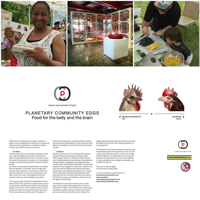 PCC Eggs part of community centred project in Detroit