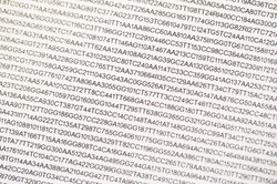 Book of Genomes