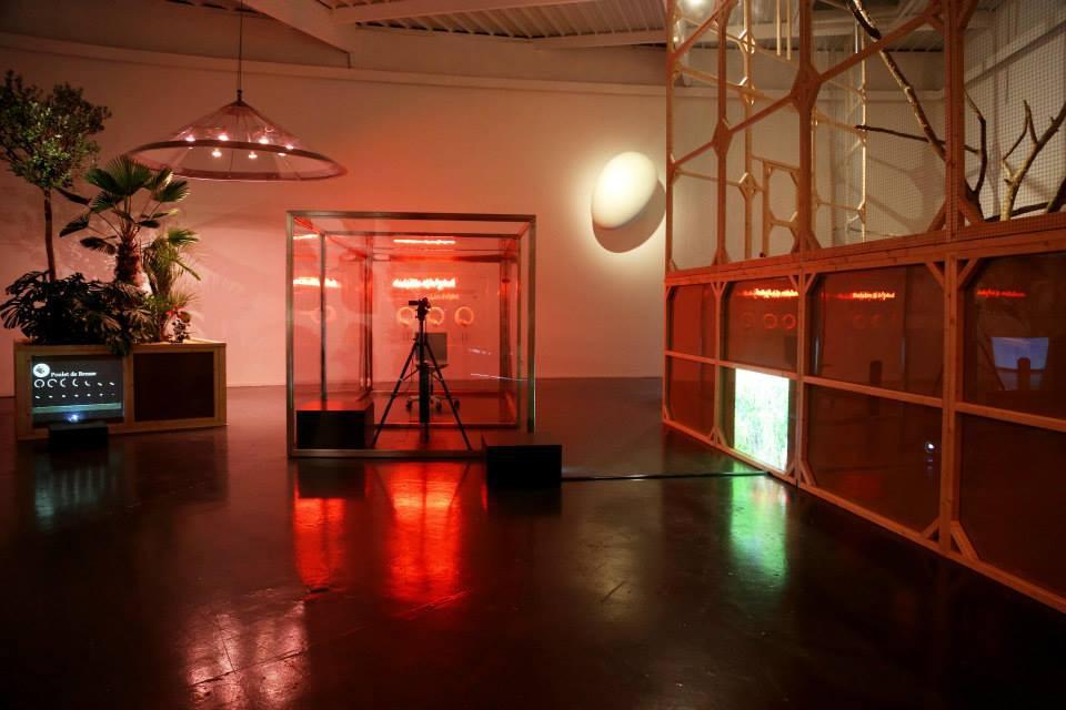 installation view, Never Green, Rurart, Poitiers (FR)