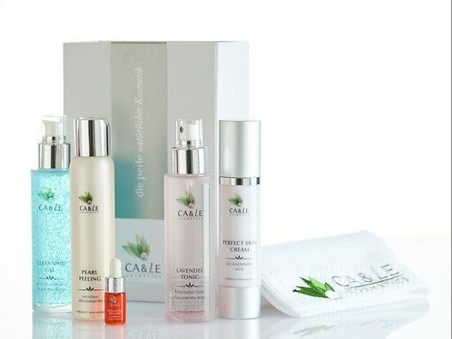 Face Clean & Perfect Skin